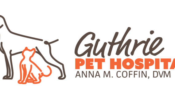 Ask Dr. Anna: How to find the perfect pet questionnaire