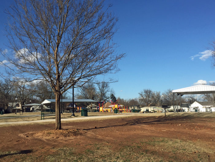 Watch: Trees donated, planted at Banner Park