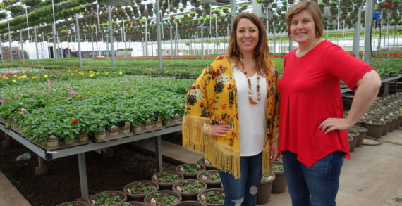 Guthrie Greenhouse supporting the Veterans Memorial